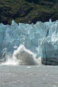 sound sailing glacier bay tours