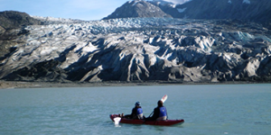 Glacier Bay or Endicott Arm 10-day